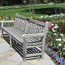 Bench Marks the Spot by Monnie Ryan