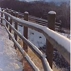 Winter Fence by Paula Thompson