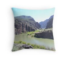 Green at Ladore Throw Pillow
