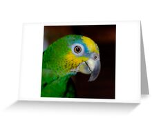 Orange Winged beauty! Greeting Card
