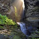 Watkins Glen Sunbeams by Abbey Walls