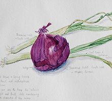 Red Onion and Spring Onions by Geraldine M Leahy