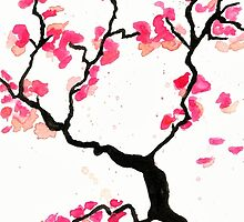 Cherry Blossoms by Amayab
