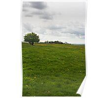 An Open Meadow Poster