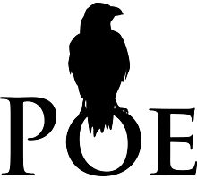 The raven sitting on E. A. Poe Photographic Print