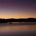 Sunrise Over the Johnstone River by Ron  Wilson