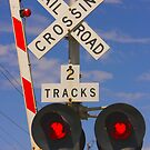 Trains - Railroad Crossing by Buckwhite