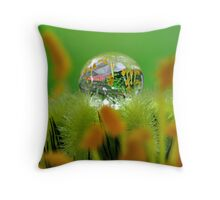 Small World, Isn't it? (detail) Throw Pillow