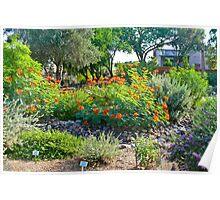 Green Valley Gardeners' Arid Garden Poster