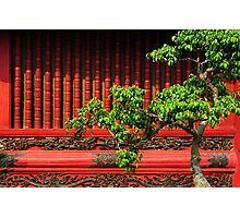 Temple of Literature, Hanoi Photographic Print
