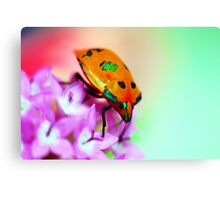 Watercolours of Spring Canvas Print