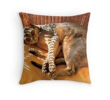 Zaki in Gold Wicker Chair Throw Pillow