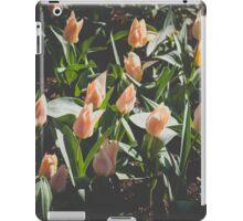 Spring Mood iPad Case/Skin