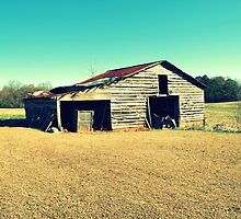 Barn by Tracey Hampton