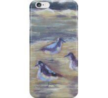 Bird Beach Phone Tablet Cases & Skins iPhone Case/Skin