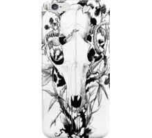 Autumn Fruit iPhone Case/Skin