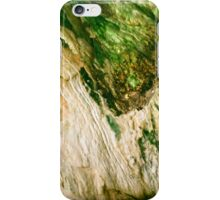 Cave Minerals at the Soda Dam in New Mexico iPhone Case/Skin