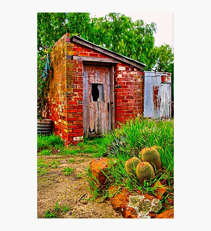 """The Garden Shed"" Photographic Print"