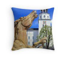 Horse Fountain in Salzburg Austria Throw Pillow