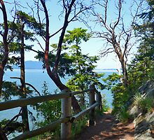 Larrabee Hiking Trail by Tamara Valjean