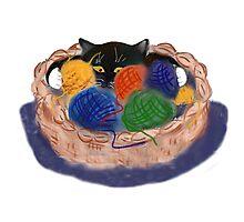 Kitten in Yarn Basket Photographic Print