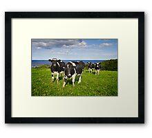 Kiama Hinterland Framed Print
