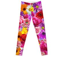 flower bed Leggings