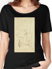 The Animal Kingdom by Georges Cuvier, PA Latreille, and Henry McMurtrie 1834  548 - Zoophytes Plant-Like Animals Women's Relaxed Fit T-Shirt