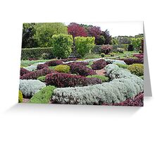 The Herbal Knot Garden at Filoli Greeting Card