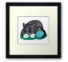Aqua Ball of Yarn for Mouse and Kitten Framed Print