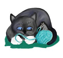 Aqua Ball of Yarn for Mouse and Kitten Photographic Print