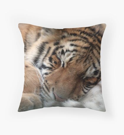 Cuddle Throw Pillow