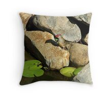 Another red-Browed Finch Throw Pillow
