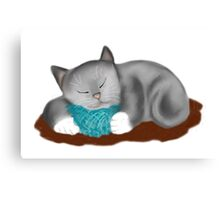 Yarn Pillow for Kitten Nap Canvas Print