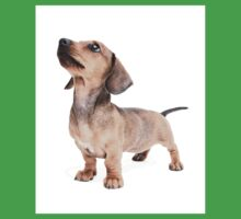Dachshund Standing Tall Kids Clothes