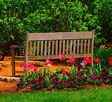 The Bench by Judy Gayle Waller