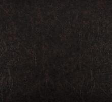 leather texture  by Artur Mroszczyk