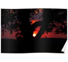 Backyard Sunset Poster