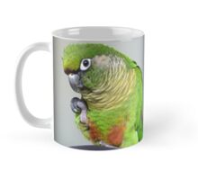 Pure Delish - Echo - Maroon-Bellied Conure - NZ Mug