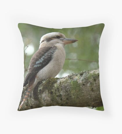 Kookaburra VIII Throw Pillow