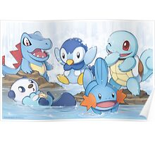 Water Type Poster