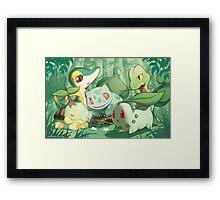 Grass Type Framed Print