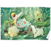 Grass Type Poster