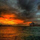Dawn - Sydney Harbour by Jeff Catford