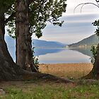 The Beautiful Okanagan  Lake  by Judy Grant