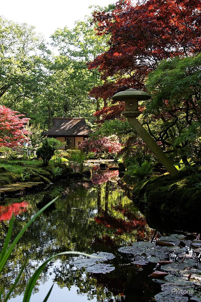 Japanese garden Den Haag by Plutone