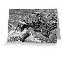 happy elephant Greeting Card