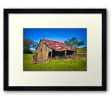 Run Down But Not Out Framed Print
