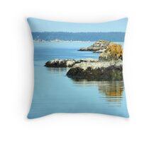 Larrabee Offshore Throw Pillow