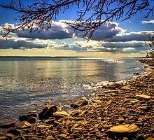 Cape John Beach by mlphoto